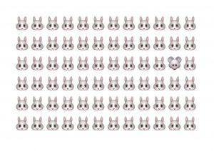 So viele Häschen.... oder versteckt sich ein Tierchen, das nicht dazu gehört?