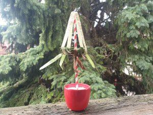 Oben in den Topf gibst du Füllmaterial, damit es auch hübsch aussieht! © ausprobiert.at